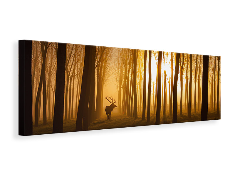 Panoramic Canvas Print Once Upon A Time