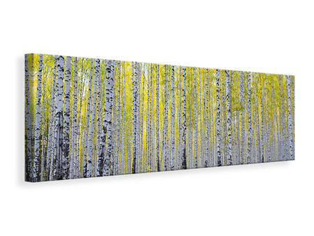 Panoramic Canvas Print Autumnal Birch Forest