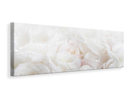 Panoramic Canvas Print White Roses In The Morning Dew