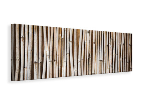 Panoramic Canvas Print Dried Bamboos