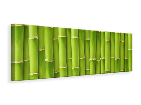 Panoramic Canvas Print Bamboo Wall