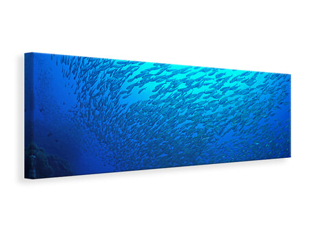 Panoramic Canvas Print Fish World