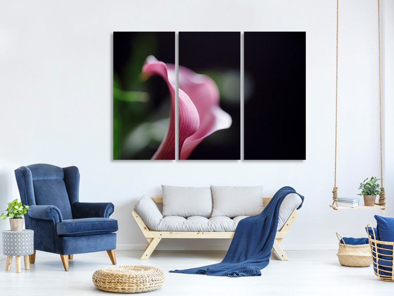 3 Piece Canvas Print Calla in purple