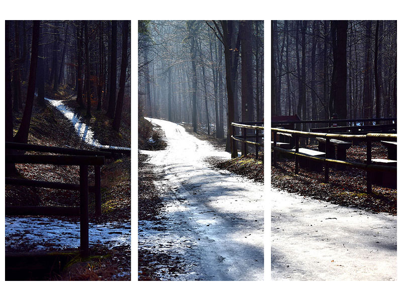 3 Piece Canvas Print A path in the snow
