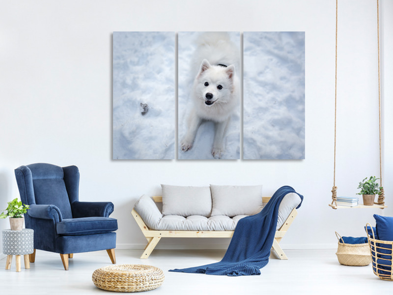 3 Piece Canvas Print Dogs joy in the snow