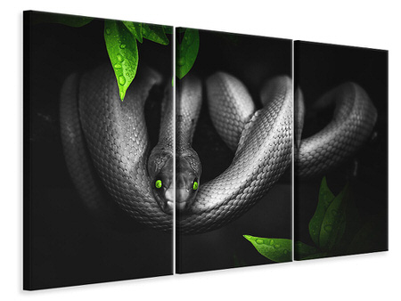 Tableau sur Toile en 3 parties Attention serpent