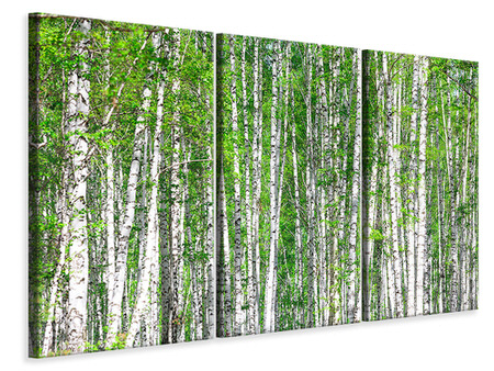3 Piece Canvas Print The Birch Forest