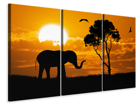 3 Piece Canvas Print Dreamy Africa