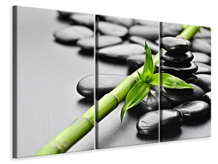 3 Piece Canvas Print Polished Stones