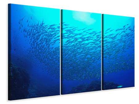 3 Piece Canvas Print Fish World
