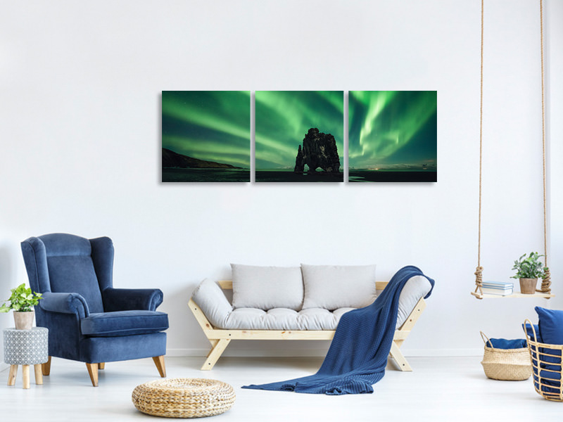 Panoramic 3 Piece Canvas Print Rhino II