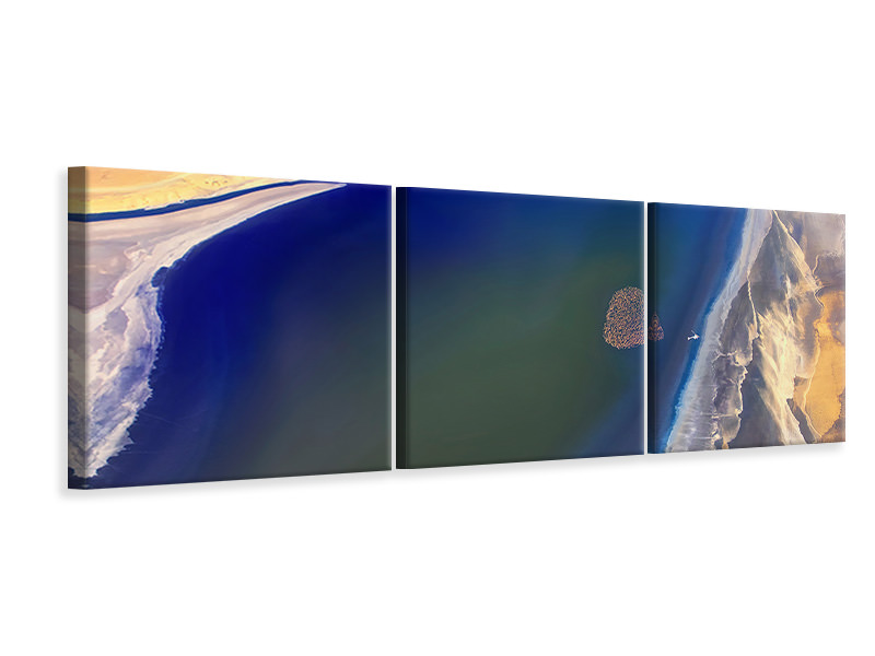 Panoramic 3 Piece Canvas Print The Heart