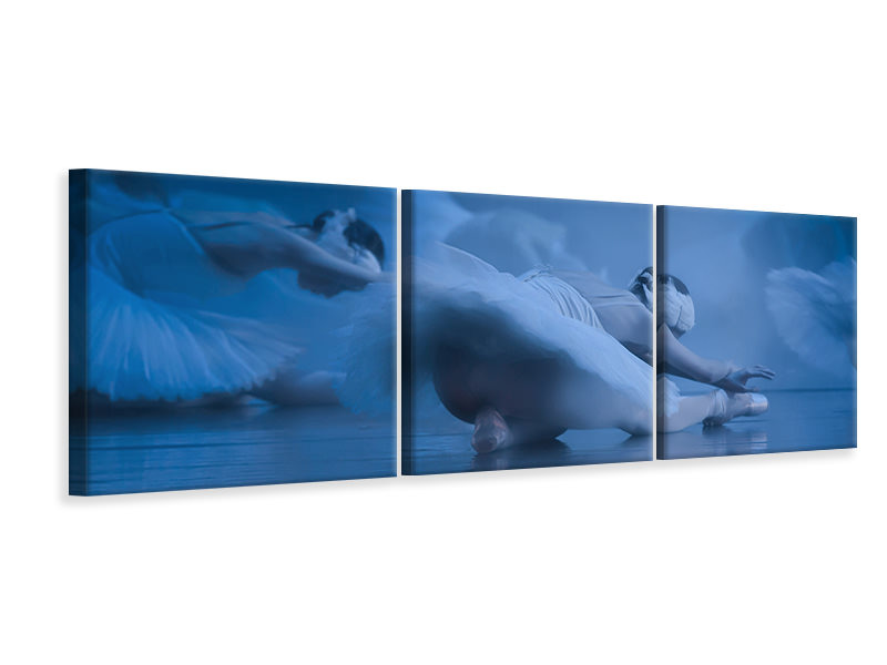 Panoramic 3 Piece Canvas Print Dont Shoot