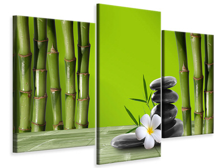 Modern 3 Piece Canvas Print Bamboo