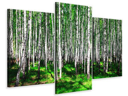 Modern 3 Piece Canvas Print Summerly Birch Forest