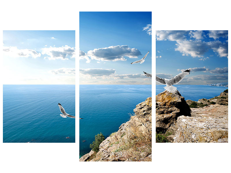Modern 3 Piece Canvas Print The Seagulls And The Sea