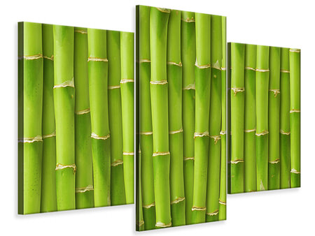 Modern 3 Piece Canvas Print Bamboo Wall