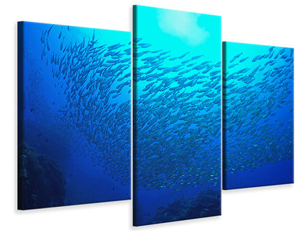 Modern 3 Piece Canvas Print Fish World