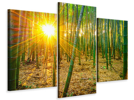 Modern 3 Piece Canvas Print Bamboos