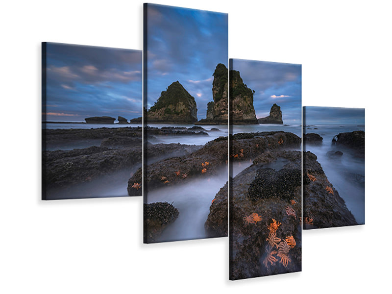 Modern 4 Piece Canvas Print Starfish