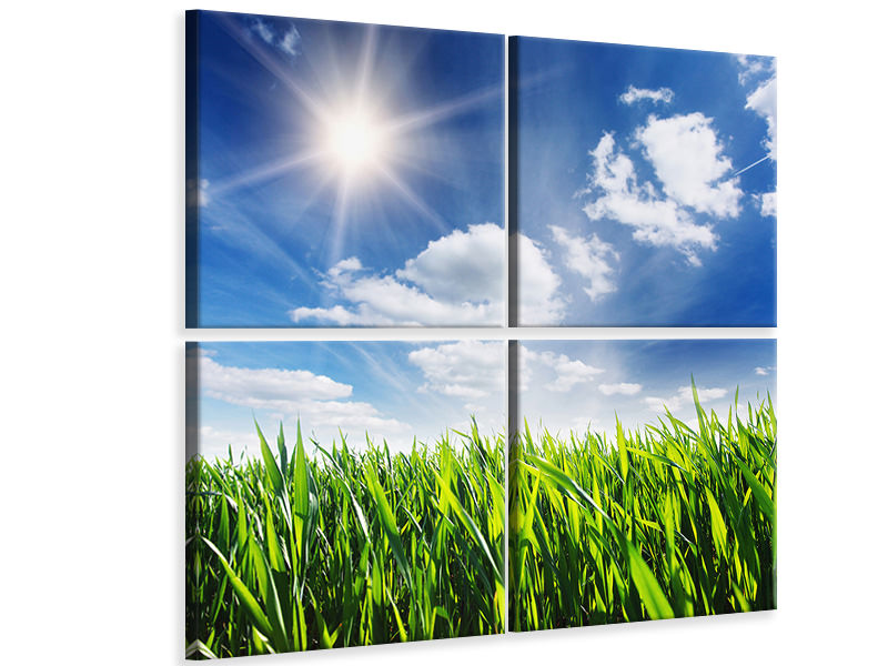 4 Piece Canvas Print Spring Grass