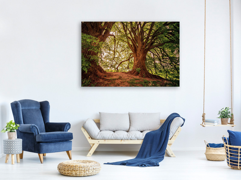 Canvas print In the dense forest