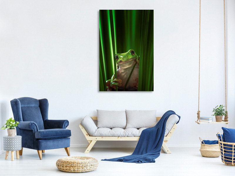 Canvas print Green Frog