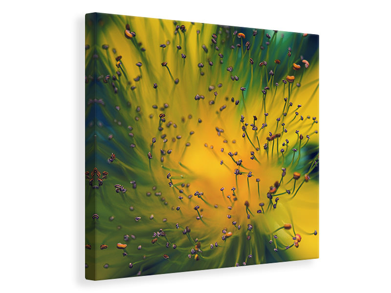 Canvas print Creation