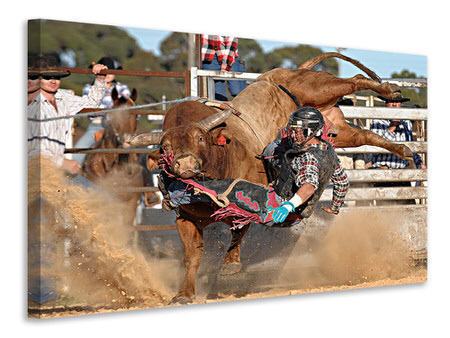 Canvas print Bull Ride