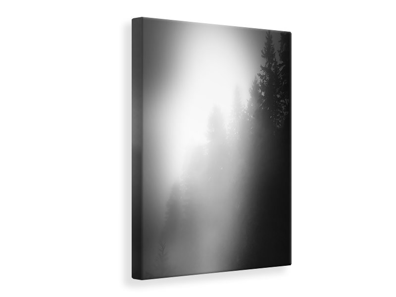 Canvas print Walking In The Forest