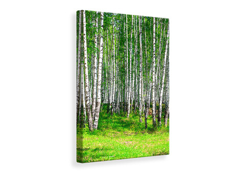 Canvas print The Birch Forest In Summer