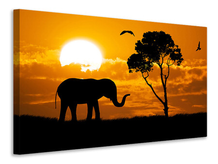Canvas print Dreamy Africa