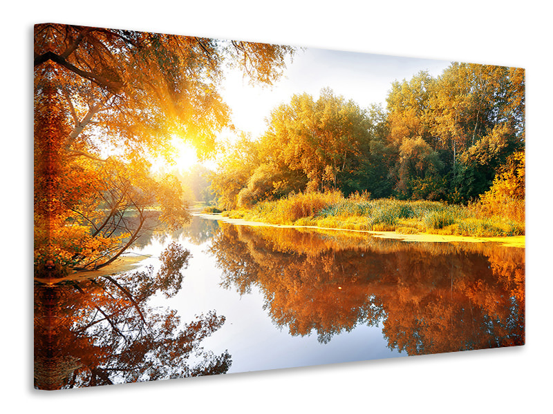 Canvas print Forest Reflection In Water