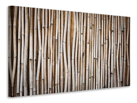 Canvas print Dried Bamboos
