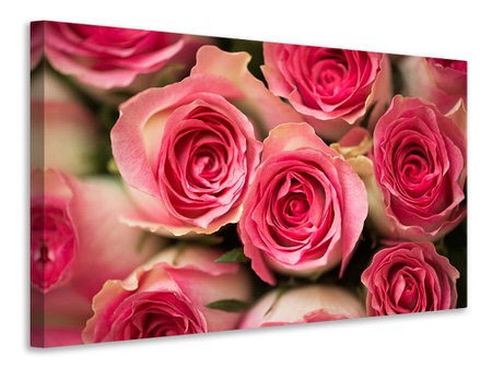 Canvas print Rose Love