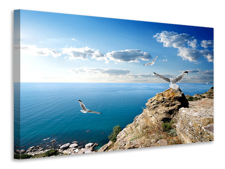 Canvas print The Seagulls And The Sea