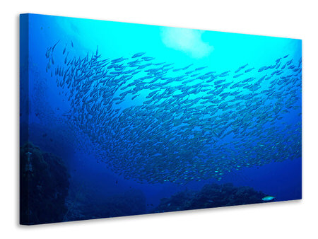 Canvas print Fish World
