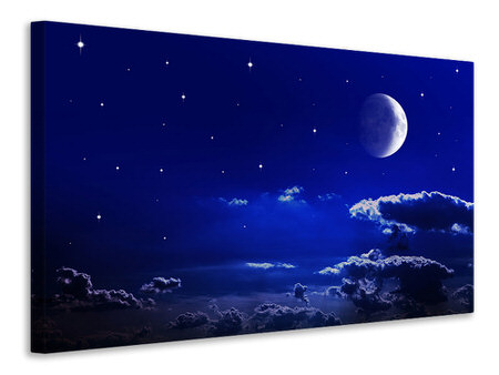 Canvas print The Night Sky