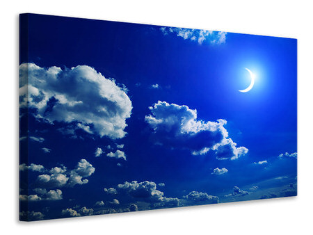 Canvas print The Moon