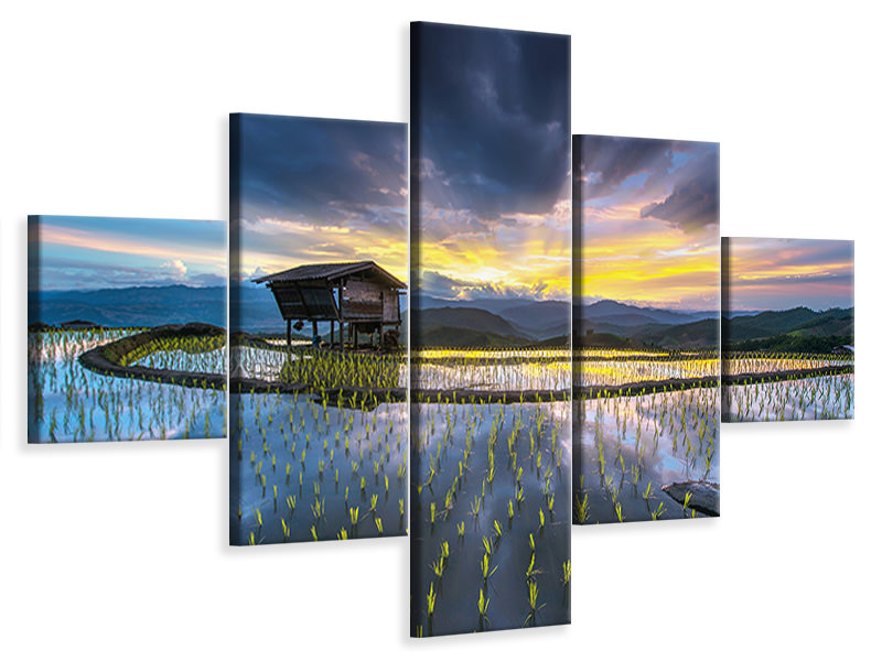 5 Piece Canvas Print Light In Rice